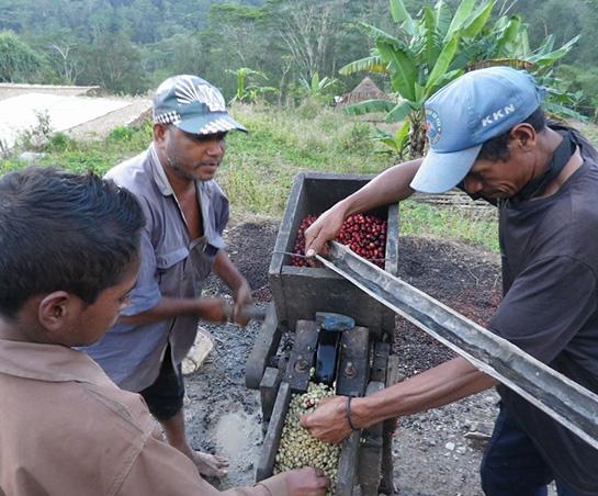 https://eerlijkkoffie.nl/wp-content/uploads/Eerlijk-koffie-boer-uit-Oost-Timor-1.jpg