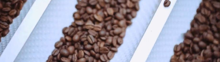 Welke koffiebonen gebrand